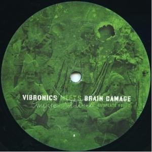 Vibronics Meets Brain...