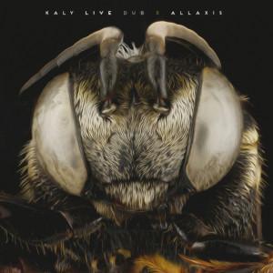 Kaly Live Dub - Allaxis...