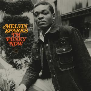 Melvin Sparks - I'm Funky...